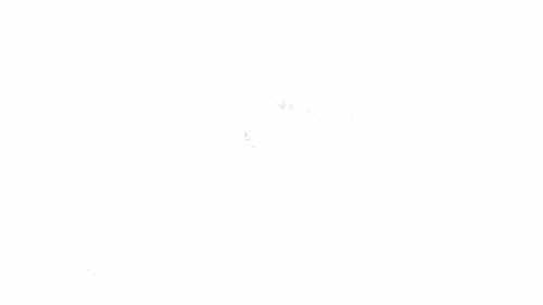 リアルタイムの胎内スキー場をチェック!10分毎に更新中!